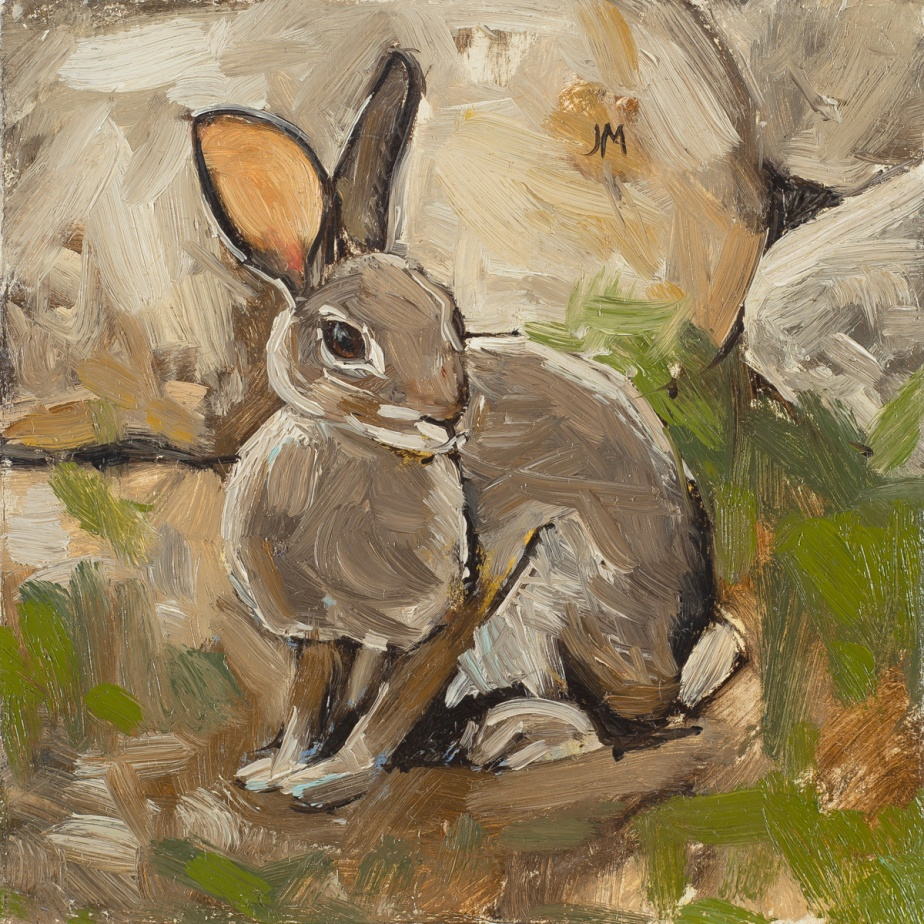 Rabbit and Rocks_lores